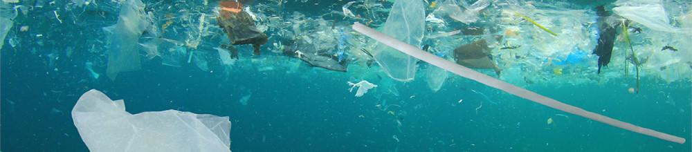 Quais os piores poluentes do mundo e como evitá-los?