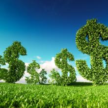Sustentabilidade para reduzir custos